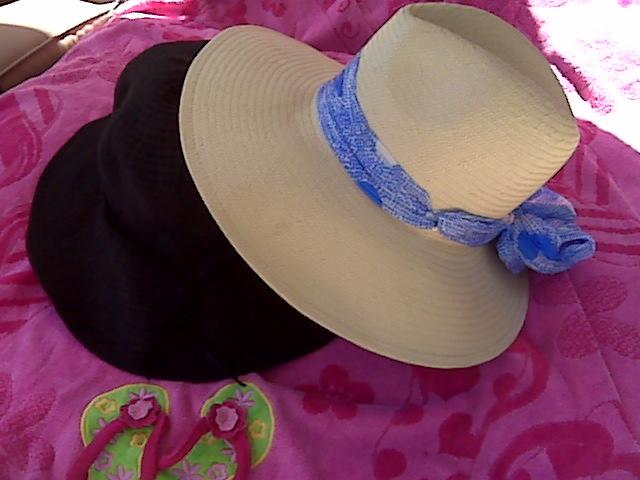 hats2010