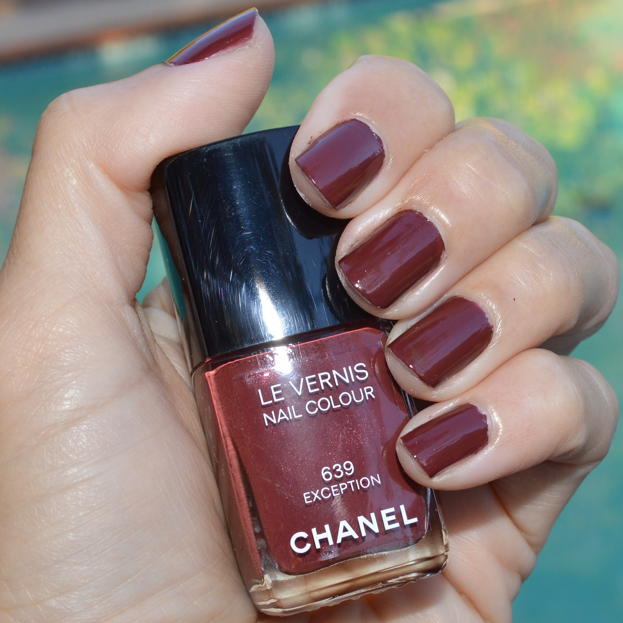 Chanel Exception nail polish late fall 2014 review | Bay Area ...