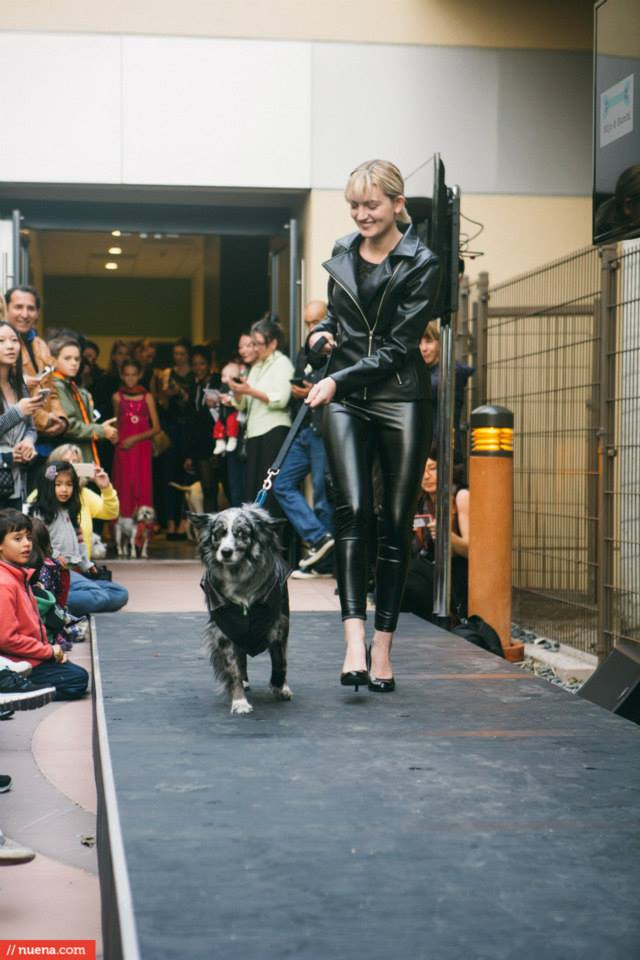 Kele Lavery in Jill Milan's Motorcycle Jacket in Eco-Friendly Faux Leather Walks an Adoptable Dog Photo by Kira Stackhouse of Nuena Photography (1)