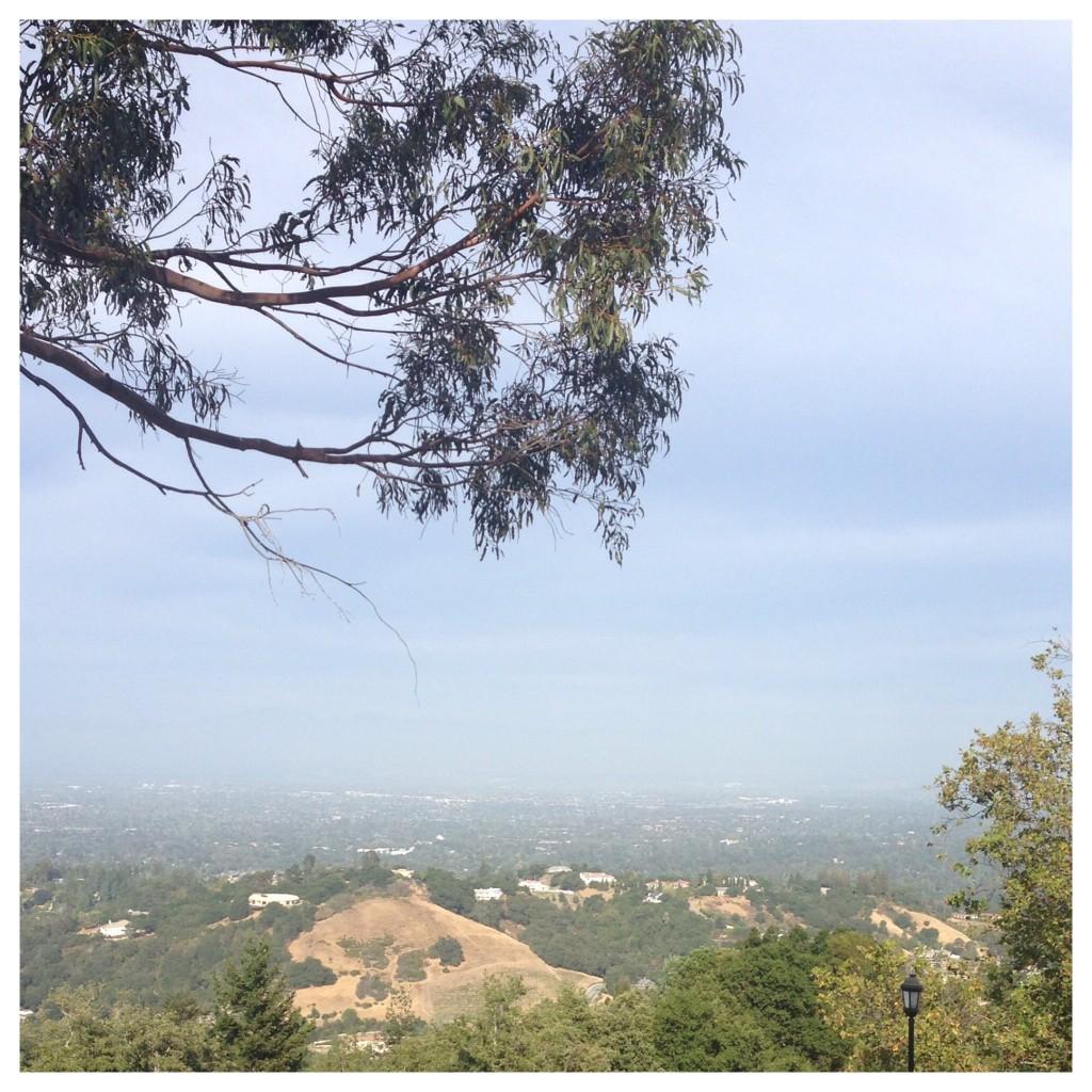 saratoga view of silicon valley