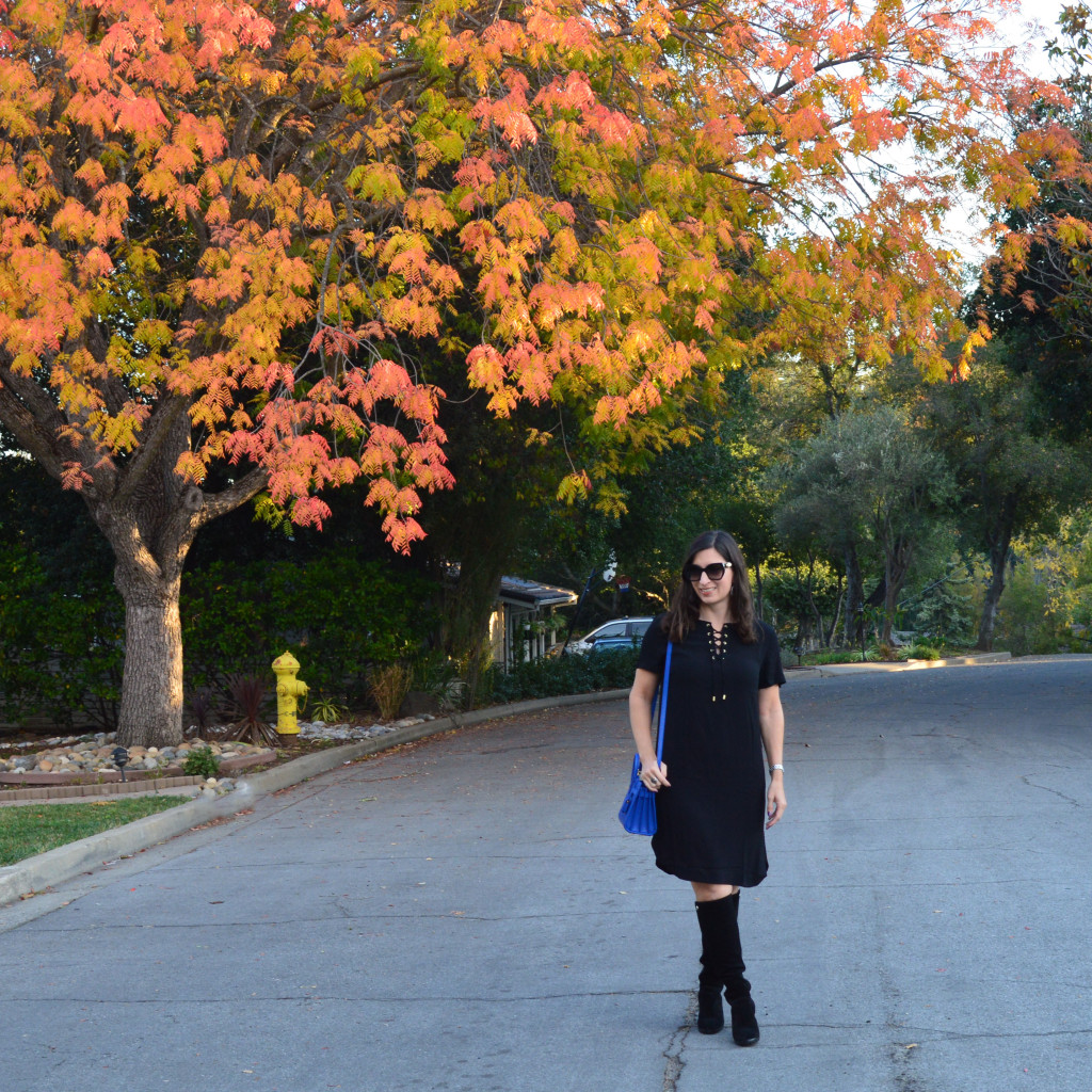 fall outfit al black with a pop of blue